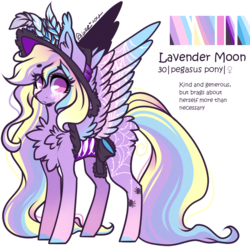 Size: 1138x1123 | Tagged: safe, artist:tenebristayga, oc, oc only, oc:lavender moon, pegasus, pony, chest fluff, clothes, commission, hat, reference sheet, saddle bag, simple background, solo, transparent background