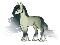 Size: 4000x3000 | Tagged: alternate universe, artist:askbubblelee, beard, death, earth pony, facial hair, looking at you, male, oc, oc only, oc:walter nutt, pony, safe, side view, simple background, solo, stallion, unshorn fetlocks, white background, willowverse