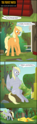 Size: 4388x14575 | Tagged: absurd file size, angry face, annoyed, apple, applejack, apple tree, artist:toxic-mario, comic, comic:toxic-mario's derpfire shipwreck, derpy hooves, dialogue, dragging, dynamite, explosives, female, fence, food, hill, muffin, new style, pony, rope, safe, spitfire, spitfire's hair is fire, string, tied, tied up, tree, tree stump