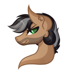 Size: 1513x1521   Tagged: safe, artist:amazing-artsong, oc, oc only, oc:artsong, pony, bust, facial hair, portrait, rule 63, simple background, solo, transparent background
