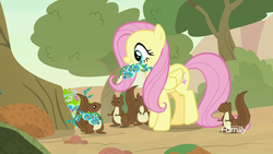 Size: 1920x1080 | Tagged: safe, screencap, fluttershy, pegasus, pony, squirrel, sounds of silence, discovery family logo, female, flower, foal's breath, mare, mouth hold