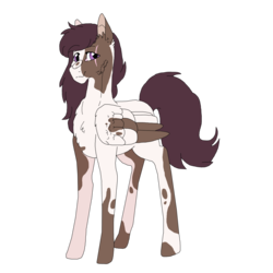 Size: 1485x1485 | Tagged: safe, artist:dreamcloudadopts, oc, oc only, oc:treasure trove, pegasus, pony, female, mare, offspring, parent:pipsqueak, parent:scootaloo, parents:scootasqueak, piebald colouring, pinto, simple background, solo, transparent background