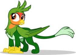 Size: 1024x737   Tagged: safe, artist:mlp-trailgrazer, oc, oc only, griffon, parrot griffon, claws, female, griffon oc, lovebird, paws, show accurate, simple background, solo, transparent background, vector