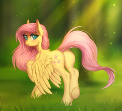 Size: 1316x1200 | Tagged: safe, artist:margony, fluttershy, pegasus, pony, blushing, crepuscular rays, cute, ear fluff, female, flutterbutt, head turn, looking at you, looking back, looking back at you, mare, plot, raised hoof, rear view, shyabetes, smiling, solo, spread wings, standing, underhoof, wings