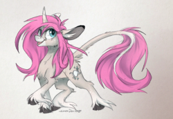 Size: 1017x700 | Tagged: artist:lonerdemiurge, classical unicorn, cloven hooves, curved horn, digital art, ear piercing, female, floppy ears, fluffy, freckles, horn, leonine tail, long mane, long tail, mare, oc, oc only, oc:tarot, palomino, piercing, pink mane, pony, safe, simple background, solo, unicorn, unshorn fetlocks