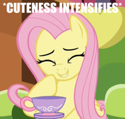 Size: 947x903 | Tagged: chair, coaster, cropped, cup, cute, edit, edited screencap, eyes closed, female, fluttershy, giggling, image macro, laughing, make new friends but keep discord, mare, meme, pegasus, pony, safe, screencap, shyabetes, solo, teacup, x intensifies