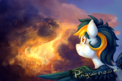 Size: 1500x1000 | Tagged: artist:pingwinowa, cloud, cloudy, oc, oc only, pegasus, safe, solo, sunset