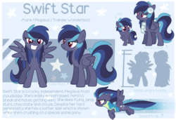 Size: 3000x2048 | Tagged: artist:epochaii, clothes, female, mare, oc, oc:swift star, pegasus, pony, reference sheet, safe, solo, uniform, wonderbolt trainee uniform