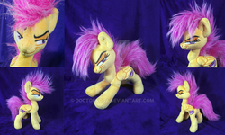 Size: 1024x614 | Tagged: artist:doctorkoda, irl, older, older scootaloo, photo, plushie, pony, safe, scootaloo, smiling, smirk, solo