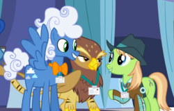 Size: 1042x665 | Tagged: background griffon, background pony, bowtie, clothes, cowboy hat, cropped, female, fluffy clouds, galena, grand equestria pony summit, griffon, hat, jacket, male, mare, name tag, pony, princess spike (episode), raised hoof, safe, screencap, spread wings, stallion, tiger griffon, trio, wings, yuma spurs