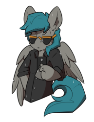Size: 2550x3300 | Tagged: artist:bbsartboutique, aviator glasses, male, oc, oc only, oc:vanguard velocity, pegasus, pony, safe, selfie, stallion