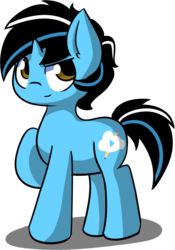 Size: 1056x1511 | Tagged: safe, artist:arielsbx, oc, oc only, oc:cold dream, earth pony, pony, 2019 community collab, derpibooru community collaboration, male, reference, simple background, solo, stallion, transparent background