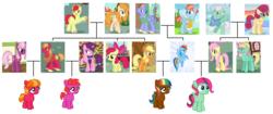 Size: 3992x1680 | Tagged: safe, artist:3d4d, apple bloom, applejack, big macintosh, bow hothoof, bright mac, cheerilee, fluttershy, gentle breeze, pear butter, posey shy, rainbow dash, sugar belle, windy whistles, zephyr breeze, oc, pony, appledash, cheerimac, family, family tree, female, flutterdash, infidelity, lesbian, magical lesbian spawn, male, offspring, parent:applejack, parent:big macintosh, parent:cheerilee, parent:fluttershy, parent:rainbow dash, parent:sugar belle, parents:appledash, parents:cheerimac, parents:flutterdash, parents:sugarmac, polygamy, shipping, straight, sugarmac