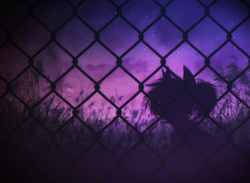 Size: 2335x1712 | Tagged: safe, artist:norra, ambient, cozy, evening, fence, field, night, night sky, silhouette, sky