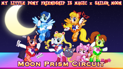 Size: 1920x1080 | Tagged: amy anderson, artist:dashiemlpfim, artist:meganlovesangrybirds, crossover, earth pony, female, filly, flying, hino rei, lita kino, mina aino, moon, pegasus, ponified, pony, rini tsukino, safe, sailor chibi moon, sailor jupiter, sailor mars, sailor mercury, sailor moon, sailor uniform, sailor venus, serena tsukino, text, unicorn, uniform