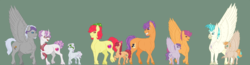 Size: 4472x1166 | Tagged: safe, artist:ganashiashaka, apple bloom, chipcutter, scootaloo, sweetie belle, tender taps, terramar, oc, oc:blazer, oc:lunar luck, oc:marble chord, oc:terra taps, classical hippogriff, classical unicorn, earth pony, hippogriff, pony, unicorn, bandana, chipbelle, clothes, cloven hooves, colt, curved horn, cutie mark, cutie mark crusaders, female, filly, foal, glasses, horn, interspecies, male, mare, offspring, older, older apple bloom, older scootaloo, older sweetie belle, parent:apple bloom, parent:chipcutter, parent:tender taps, parent:terramar, parents:chipbelle, parents:tenderbloom, parents:terraloo, raised hoof, realistic horse legs, scarf, shipping, spread wings, stallion, straight, tenderbloom, terraloo, the cmc's cutie marks, unshorn fetlocks, wings