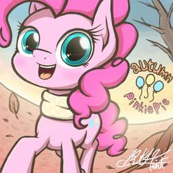 Size: 1000x1000   Tagged: safe, artist:phoenixrk49, pinkie pie, earth pony, pony, clothes, female, looking at you, mare, scarf, solo