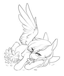 Size: 563x673 | Tagged: safe, artist:amphoera, oc, oc:venti via, pegasus, pony, flower, lineart, solo
