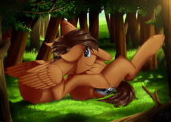 Size: 2469x1765 | Tagged: safe, artist:uliovka, oc, oc only, oc:wiley waves, pegasus, pony, belly, belly bed, fetish, fluffy, forest, half, leg fluff, looking at you, lying, male, modular, prone, solo, stallion, tail, wat