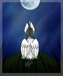 Size: 2500x3000 | Tagged: safe, artist:rskyfly, oc, oc only, oc:shiron, alicorn, pony, alicorn oc, digital art, folded wings, high res, looking up, male, moon, night, signature, sitting, solo, stallion, stars, wings, ych result