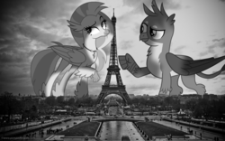 Size: 1600x1001 | Tagged: safe, artist:andrevus, artist:frownfactory, artist:somerandomminion, gallus, silverstream, classical hippogriff, griffon, hippogriff, pony, black and white, eiffel tower, female, france, gallstream, giant ponies in real life, grayscale, irl, macro, male, monochrome, paris, photo, photoshop, ponies in real life, shipping, story in the source, straight