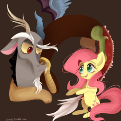 Size: 900x900 | Tagged: safe, artist:sansdy, discord, fluttershy, draconequus, pegasus, pony, bipedal, blushing, duo, female, looking at each other, male, mare, simple background, talking