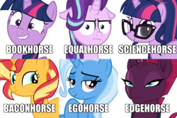 Size: 900x600 | Tagged: safe, sci-twi, starlight glimmer, sunset shimmer, tempest shadow, trixie, twilight sparkle, alicorn, pony, equestria girls, bacon hair, bookhorse, chart, counterparts, edgehorse, equality, equestria girls ponified, lip bite, magical sextet, nickname, ponified, science, twilight sparkle (alicorn), twilight's counterparts, unicorn sci-twi