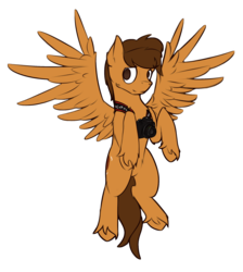 Size: 1959x2190 | Tagged: 2019 community collab, artist:toanderic, camera, derpibooru community collaboration, flying, male, oc, oc only, oc:toanderic, pegasus, pony, safe, simple background, solo, stallion, transparent background