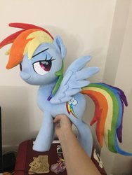 Size: 1536x2048 | Tagged: safe, artist:nazegoreng, rainbow dash, pegasus, pony, faic, female, grin, irl, lidded eyes, mare, photo, plushie, smiling, smug, smugdash, solo, spread wings, wings