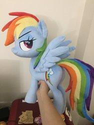 Size: 1536x2048 | Tagged: safe, artist:nazegoreng, rainbow dash, pegasus, pony, faic, female, grin, irl, lidded eyes, mare, photo, plushie, smiling, smug, smugdash, solo, spread wings, wingboner, wings