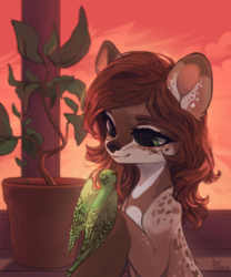 Size: 2666x3209 | Tagged: safe, artist:graypillow, oc, oc only, oc:talula roo, deer, parrot, coat markings, commission, looking at each other, spotted