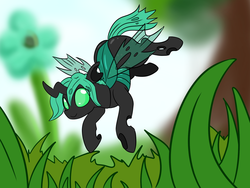Size: 1200x900 | Tagged: artist:dudey64, changeling, green changeling, oc, oc:speculo, safe, solo