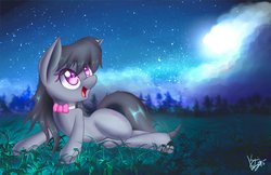 Size: 4096x2650 | Tagged: safe, artist:kawaiipony2, octavia melody, earth pony, pony, bowtie, cloud, cloudy, colored pupils, cute, female, looking up, lying down, mare, night, night sky, on side, open mouth, signature, sky, smiling, solo, stars, tavibetes, wallpaper