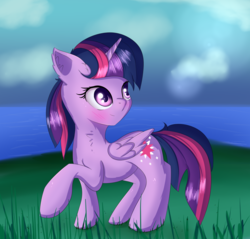 Size: 1722x1647 | Tagged: safe, artist:brok-enwings, twilight sparkle, alicorn, pony, blushing, female, grass, grass field, mare, raised hoof, solo, twilight sparkle (alicorn), water