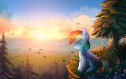 Size: 5000x3167 | Tagged: safe, artist:atlas-66, rainbow dash, pegasus, pony, absurd resolution, canterlot, cliff, cloud, cute, dashabetes, eyes closed, female, forest, mare, outdoors, profile, scenery, sitting, smiling, solo, sun, tree