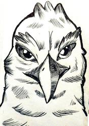 Size: 1234x1756   Tagged: safe, artist:battybegins, oc, oc only, oc:der, griffon, bust, male, monochrome, portrait, sketch, solo
