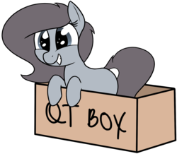 Size: 1836x1603 | Tagged: safe, artist:axlearts, oc, oc only, oc:delpone, earth pony, pony, box, female, pony in a box, simple background, smiling, solo, transparent background