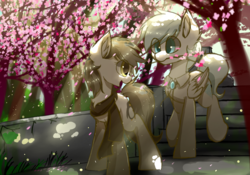 Size: 2000x1400 | Tagged: safe, artist:heddopen, oc, oc only, oc:diamond frost, oc:noot, earth pony, pegasus, pony, cherry blossoms, clothes, dianoot, ear fluff, female, flower, flower blossom, jewel, looking back, male, mare, oc x oc, scarf, shipping, stallion, tree, walking, wings