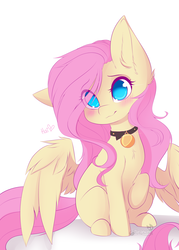 Size: 800x1119 | Tagged: safe, artist:teranen, fluttershy, pegasus, pony, blushing, collar, cute, daaaaaaaaaaaw, eye clipping through hair, female, femsub, flutterpet, fluttersub, hai, head tilt, hnnng, looking at you, mare, no pupils, pet tag, pony pet, raised hoof, shyabetes, simple background, sitting, solo, spread wings, submissive, weapons-grade cute, white background, wings