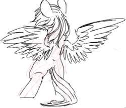 Size: 354x305 | Tagged: safe, artist:yoditax, rainbow dash, pegasus, pony, bipedal, female, mare, monochrome, simple background, sketch, solo, spread wings, white background, wings