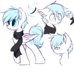 Size: 1400x1400 | Tagged: safe, artist:heddopen, oc, oc only, oc:diamond frost, pegasus, pony, chest fluff, clothes, confused, ear fluff, facial expressions, floppy ears, male, reference sheet, scarf, simple background, smiling, stallion, white background, wings