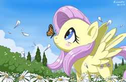Size: 772x502 | Tagged: safe, artist:vinilyart, fluttershy, butterfly, pegasus, pony, blush sticker, blushing, butterfly on nose, camomile, cute, female, flower, flower field, flower petals, insect on nose, looking at something, looking up, monarch butterfly, profile, scenery, shyabetes, smiling, solo, spread wings, standing, wings