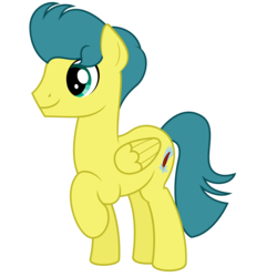 Size: 9375x9375 | Tagged: safe, artist:besttubahorse, oc, oc only, oc:zenith star, pegasus, pony, absurd resolution, male, raised hoof, simple background, solo, transparent background, vector