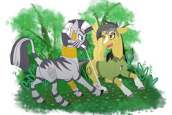 Size: 3000x2000 | Tagged: safe, artist:jackiebloom, daring do, zecora, pegasus, pony, zebra, bandage, blaze (coat marking), daringcora, duo, ear piercing, earring, female, high res, jewelry, leg rings, lesbian, mare, mouth hold, neck rings, piercing, shipping, simple background, socks (coat marking), transparent background