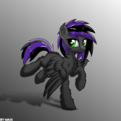 Size: 2369x2369 | Tagged: artist:maxiclouds, fluffy, male, oc, pegasus, safe, shadow, simple background, solo, stallion, wings