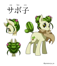 Size: 1045x1200 | Tagged: safe, artist:potetecyu_to, oc, oc only, oc:saboco, cactus pony, earth pony, pony, cactus, cloak, clothes, cute, female, japanese, katakana, mare, odango, reference sheet, simple background, smiling, solo
