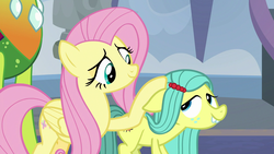 Size: 1920x1080   Tagged: safe, screencap, fluttershy, ocellus, thorax, changedling, changeling, pony, school daze, cute, diaocelles, disguise, disguised changeling, eye contact, female, filly, floppy ears, king thorax, looking at each other, male, mare, petting, pony ocellus, smiling