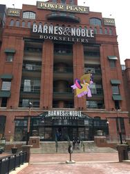 Size: 1080x1440   Tagged: safe, twilight sparkle, alicorn, pony, augmented reality, baltimore, barnes&noble, book, bookstore, excited, female, flying, gameloft, irl, mare, photo, ponies in real life, solo, that pony sure does love books, twilight sparkle (alicorn)