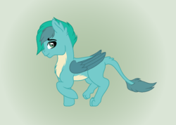 Size: 906x644 | Tagged: safe, artist:adevonfeather, oc, oc:gusty, spoiler:s08, interspecies offspring, leonine tail, magical gay spawn, offspring, parent:gallus, parent:sandbar, parents:gallbar, simple background, solo