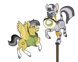 Size: 2500x2000 | Tagged: safe, artist:jackiebloom, daring do, zecora, pegasus, pony, zebra, balancing, blaze (coat marking), clothes, daringcora, ear piercing, earring, female, hat, high res, jewelry, leg rings, mare, mouth hold, neck rings, piercing, pith helmet, shirt, simple background, socks (coat marking), transparent background
